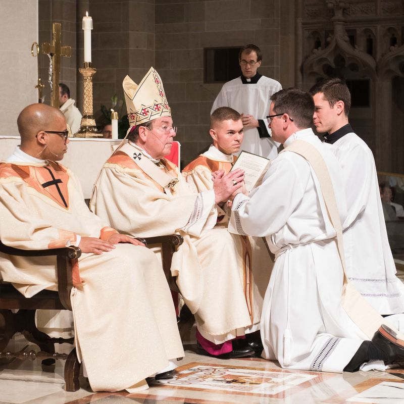 2018 Ordinations Tf4 7558