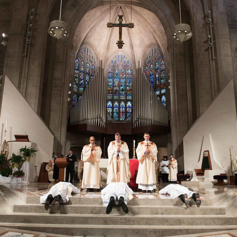 2018 Ordinations Tf4 7579