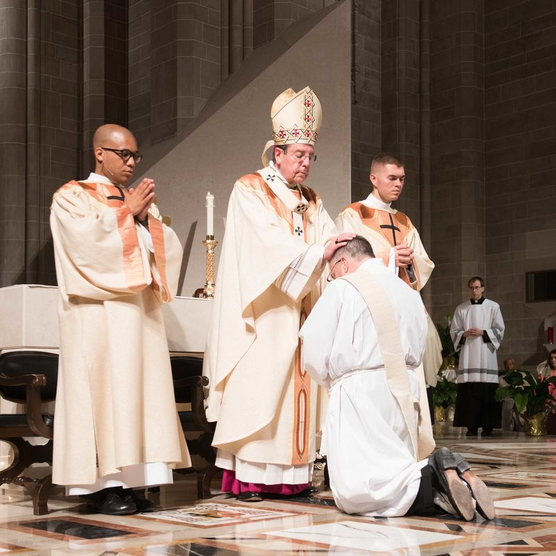 2018 Ordinations Tf4 7601