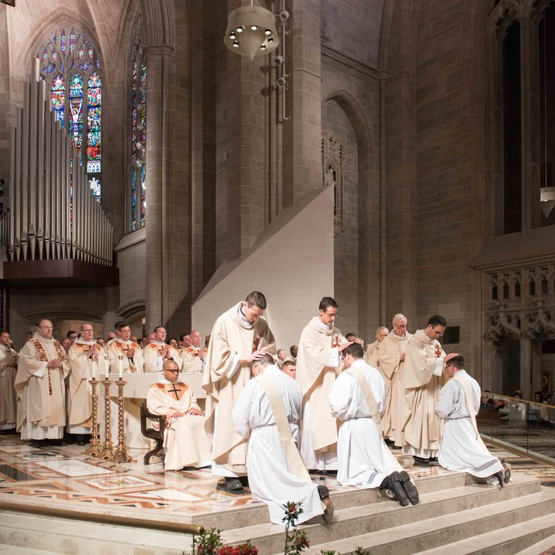 2018 Ordinations Tf4 7655