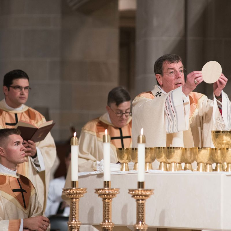 2018 Ordinations Tf4 7729