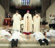 Archdiocese of Detroit Ordination