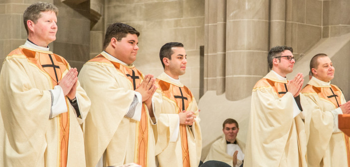 Springtime of Ordinations